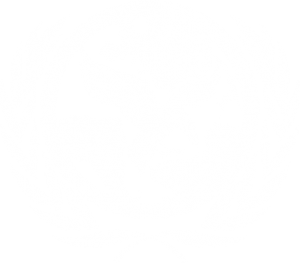 United Nations Society